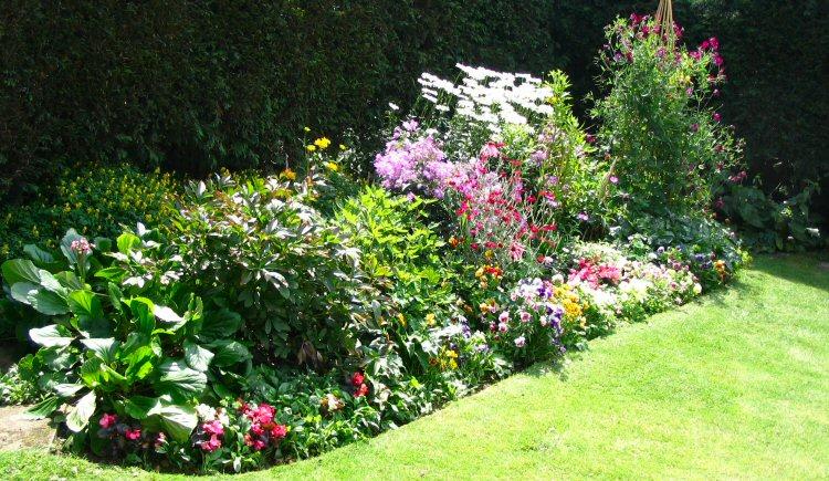 gardening-tips-for-spring