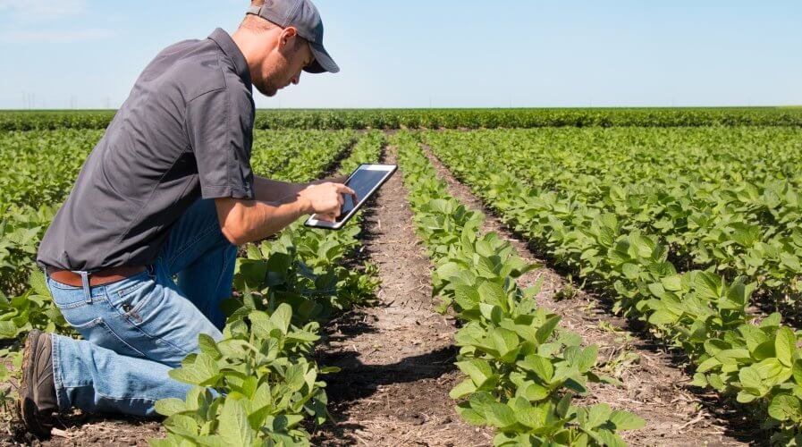 Pregled dodjeljenih potpora u poljoprivredi po Javnom pozivu za dodjelu potpora za 2018. godinu