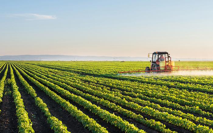 Poziv na ponovni javni uvid prijedloga Programa raspolaganja poljoprivrednim zemljištem